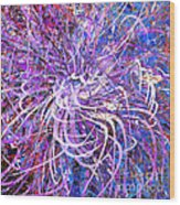 Abstract Curvy 32 Wood Print