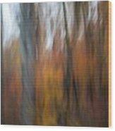Abstract Fall 13 Wood Print