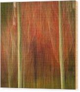 Abstract Fall 14 Wood Print