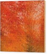 Abstract Fall 18 Wood Print