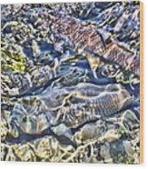 Abstract Fish 3 Wood Print