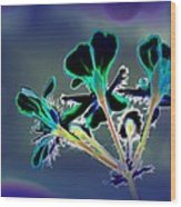 Abstract Flower - Digital Abstract Wood Print