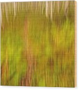 Abstract Forest Scenery Wood Print