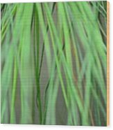 Abstract Green Pine Wood Print