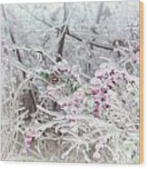 Abstract Ice Covered Shrubs Wood Print