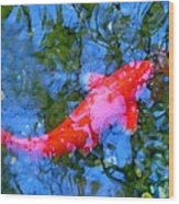 Abstract Koi 4 Wood Print