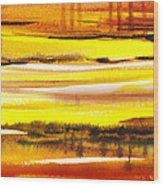 Abstract Landscape Found Reflections Wood Print