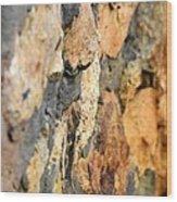 Abstract Natural Stone Wood Print