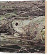Abstract Nature 12 Wood Print