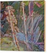 Abstract Nature 9 Wood Print
