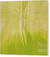 Abstract Nature  Wood Print