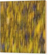 Abstract Of Autumn Gold Wood Print