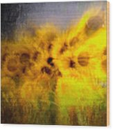 Abstract Of Sunflowers Wood Print