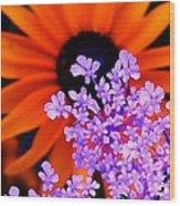 Abstract Orange And Purple Flower Wood Print