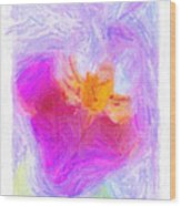 Abstract Orchid Pastel Wood Print by Antony McAulay