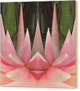 Abstract Pink Water Lily Wood Print