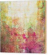 Abstract Print 14 Wood Print