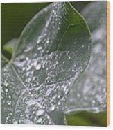 Abstract Rain Glitter Wood Print