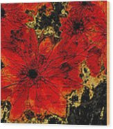 Abstract Red Flower Art  Wood Print