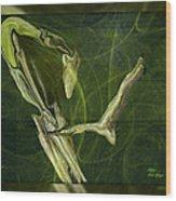 Abstract Snake And Bird Wood Print