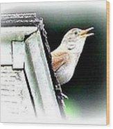Abstract Songbird Wood Print