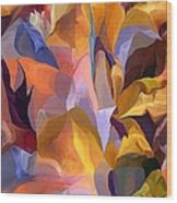 Abstract Vignettes Wood Print