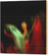 Abstract Woman Dancing With Flowing Skirts Wood Print