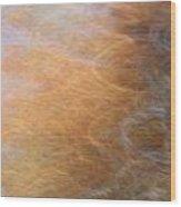 Abstract Xi Wood Print