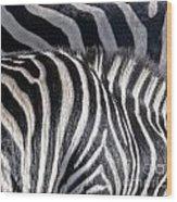 Abstract Zebra Wood Print