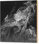 Abstraction 0286 - Marucii Wood Print