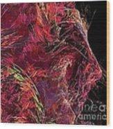 Abstraction 0387 Marucii Wood Print