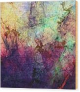 Abstraction 042914 Wood Print
