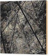 Abstraction 0619 Marucii Wood Print