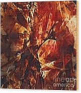 Abstraction  272 - Marucii Wood Print