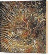 Abstraction 473-09-13 Marucii Wood Print