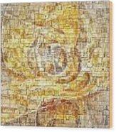 Abstraction 561-11-13 Marucii Wood Print