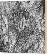 Abstraction B-w 0554 - Marucii Wood Print