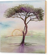 Acacia Sunrise Wood Print