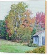 Acadia Autumn 2014 Wood Print
