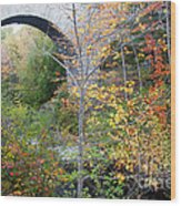 Acadia Carriage Bridge Wood Print