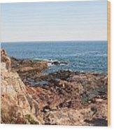 Acadia Coast Wood Print