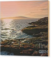Acadia National Park Wood Print by Olivier Le Queinec