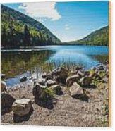 Acadia Peace Wood Print