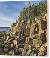Acadia Seascape Wood Print