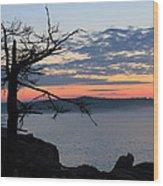 Acadia Sunrise 2 Wood Print