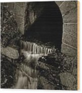 Acadia Waterfall Wood Print