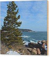 Acadian Shores In Winter Wood Print