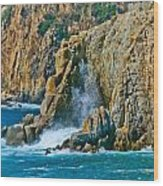 Acapulco Cliffs Wood Print