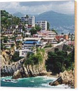 Acapulco Wood Print