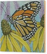 Aceo Monarch On Wild Grey Headed Coneflower Wood Print